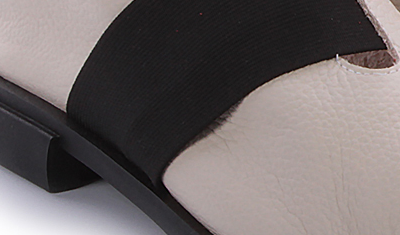 sapatilha elastico 2